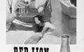 redlion1963
